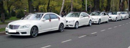 Автомобиль на свадьбу — Mercedes S класс W221 Long (белый)
